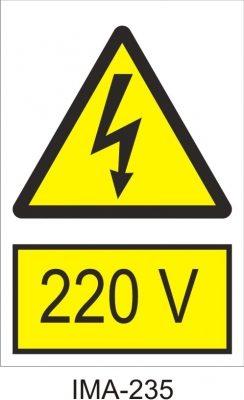 22020Vbig