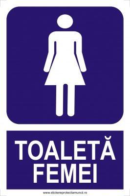 TOALETA20FEMEIbig